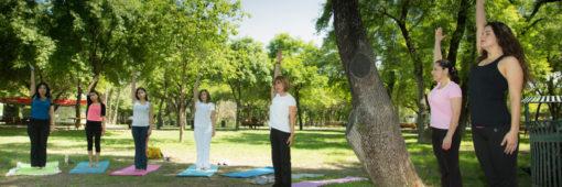 idh-yoga-ram-diplomado_yoga-003