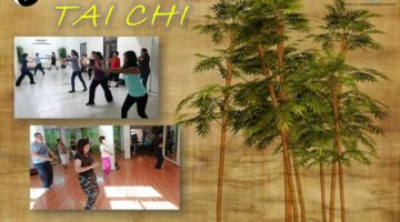 idh-yog-ram-monterrey-curso_basico-introduccion-TaiChi
